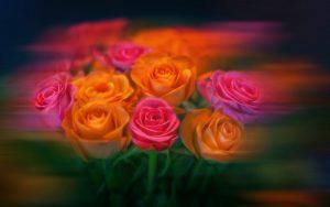 flora-magic@bk.ru 8-964-003-40-53 8-965-486-70-70