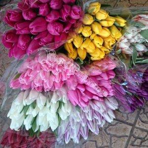 цветы, букеты, подарить цветы