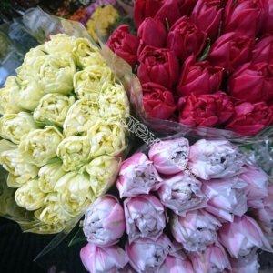 цветы, букеты, доставка цветов, подарить цветы