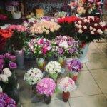 подарить букет, цветы в махачкале, купить цветы
