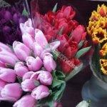 доставка цветов, свадьба, свадебный букет, букет невесты, подарить цветы