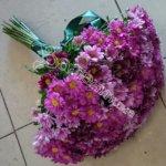 цветы в махачкале, букет девушке, подарить букет, доставка цветов,