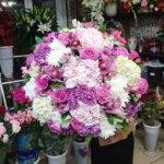 цветы в Махачкале, подарить цветы, букет девушке