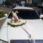 оформление машин цветам, машины на свадьбу,оформление машин